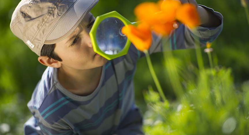 Boy in brown hat looking at orange flower through magnifying glass